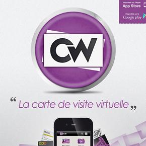 CW2013-290