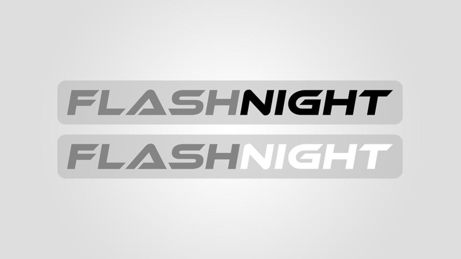 Logotype #2 - FlashNight